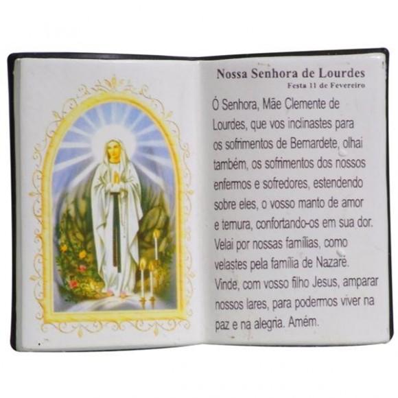 N.SRA DE LOURDES LIVRO 10X08CM